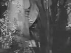 JANTAR MANTAR 1964 raat ka khamosh sannatta na puch yeh hamaare dard ki Asha Sardar Malik Hasrat Jaipuri